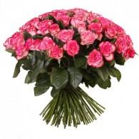 "Бело-розовая роза ""Джамалия"""