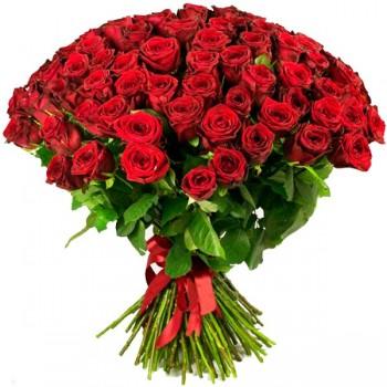 Купить 101 красная роза