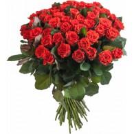 Роза красная «Эль Торо»