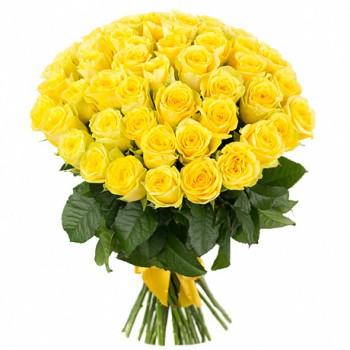 Желтая роза «Илиос»