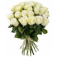 Белая роза «Аваланч»