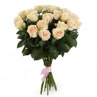 Кремовая роза «Талея»