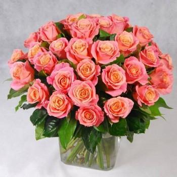 Нежно-розовая роза Мисс Пигги
