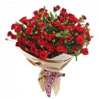 Кустовая роза «Мирабель»